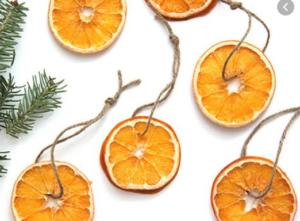 تفاله ی پرتقال